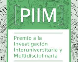 PIIM 2014: Ganadores
